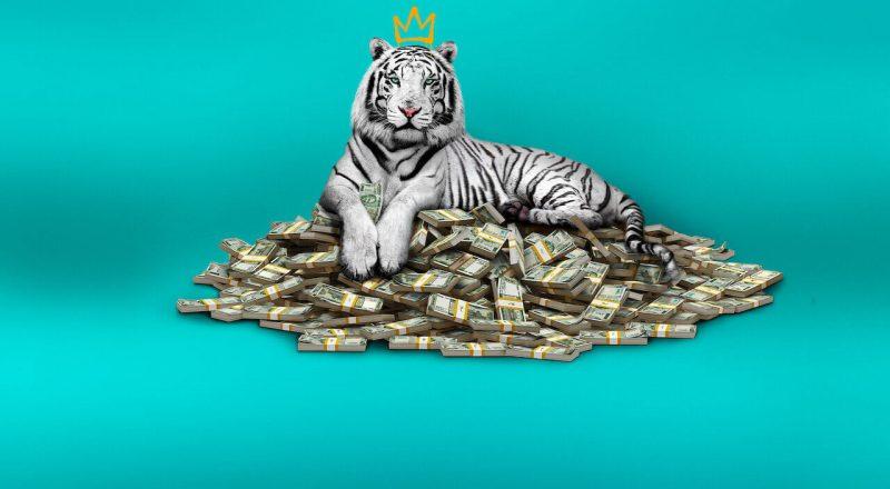 Review The White Tiger Film Terbaik 2021